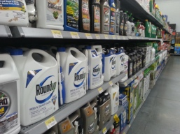 Roundup at the store