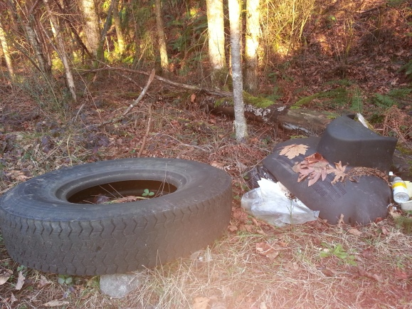 Trash with tire
