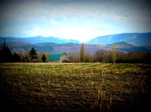 Old barn farther back, Chris Chendrickson 2-2016