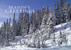 seasons-greatings