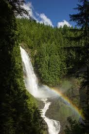 WFSP rainbow